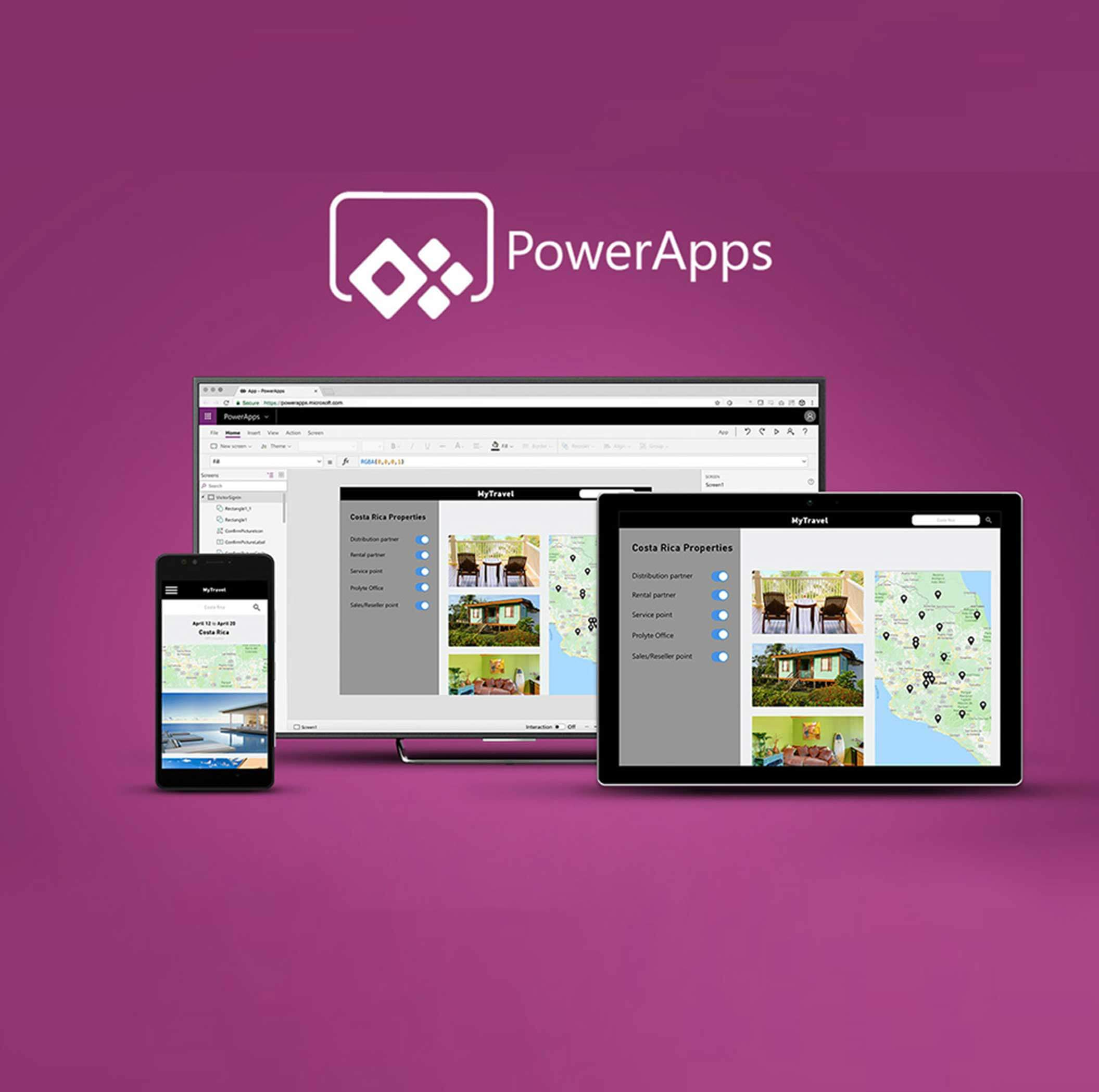 microsoft powerapps consulting